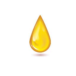 Honey-Side-Banner.jpg