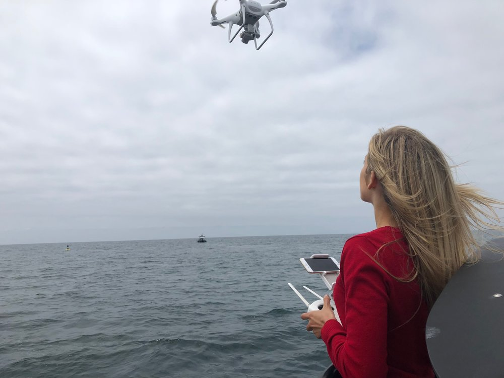 Our Day Together Includes: - 2 Hour Boat Ride Whale Watching Excursion (on a private charter)A day of networking with like-minded droners and influencers.An opportunity to ask me any questions about droning in person!A chance to get your drone up over the waterLunch afterward where we can all sit and discuss what you've learned.