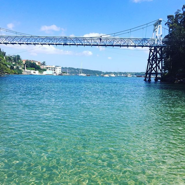 Crystal calm waters of the Parsley Bay swim. Looking forward to seeing you on Sunday🌞🏊🏼