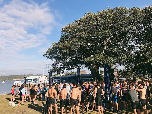 Thank you to everyone who came down to yesterday's 3 Bay Challenge — it was an epic day in Watson's Bay and we raised 5k for the @ausrhinoproject 🏃🏼‍♀️🏊🏼‍♂️ Special thanks to @sydneybrewery and @watsonsbayboutiquehotel.  Look forward to seeing everyone again next year!