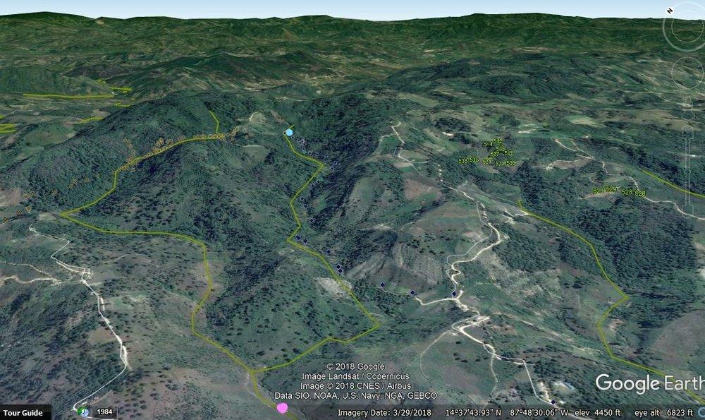 Quebrada y microcuenca de Las Flores con punto abajo de Agua de Siguatepeque. en Rosado es la toma de Aguas de Siguatepeque y Azul es la toma de Las Flores con la linea amarilla siendo la quebrada.