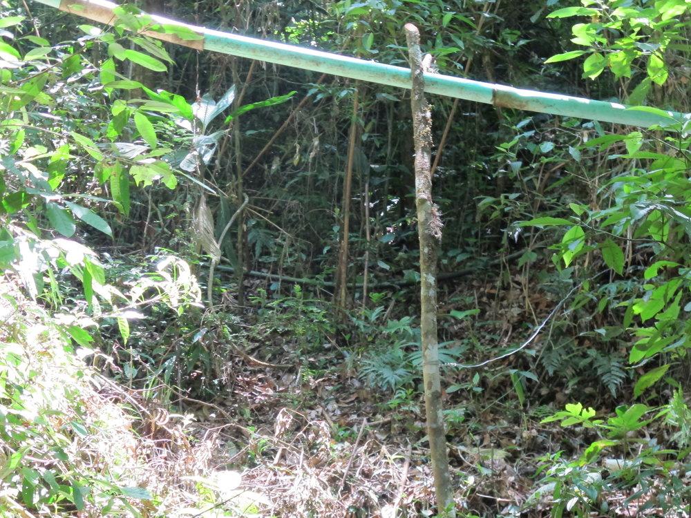 Dos manguera que vienen de proyectos de agua privados de una rama de la cuenca.
