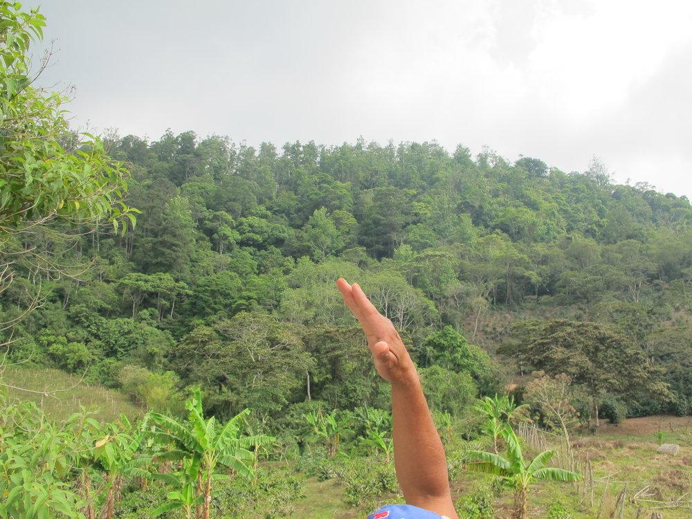 La Montaña donde está la toma de Las Lagunas #3