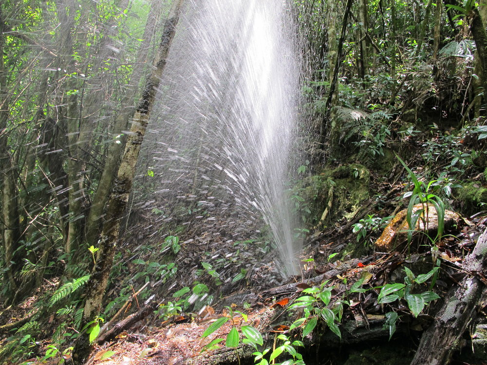 Tubería de una comunidad que está desperdiciando 45,000 galones del agua al día.