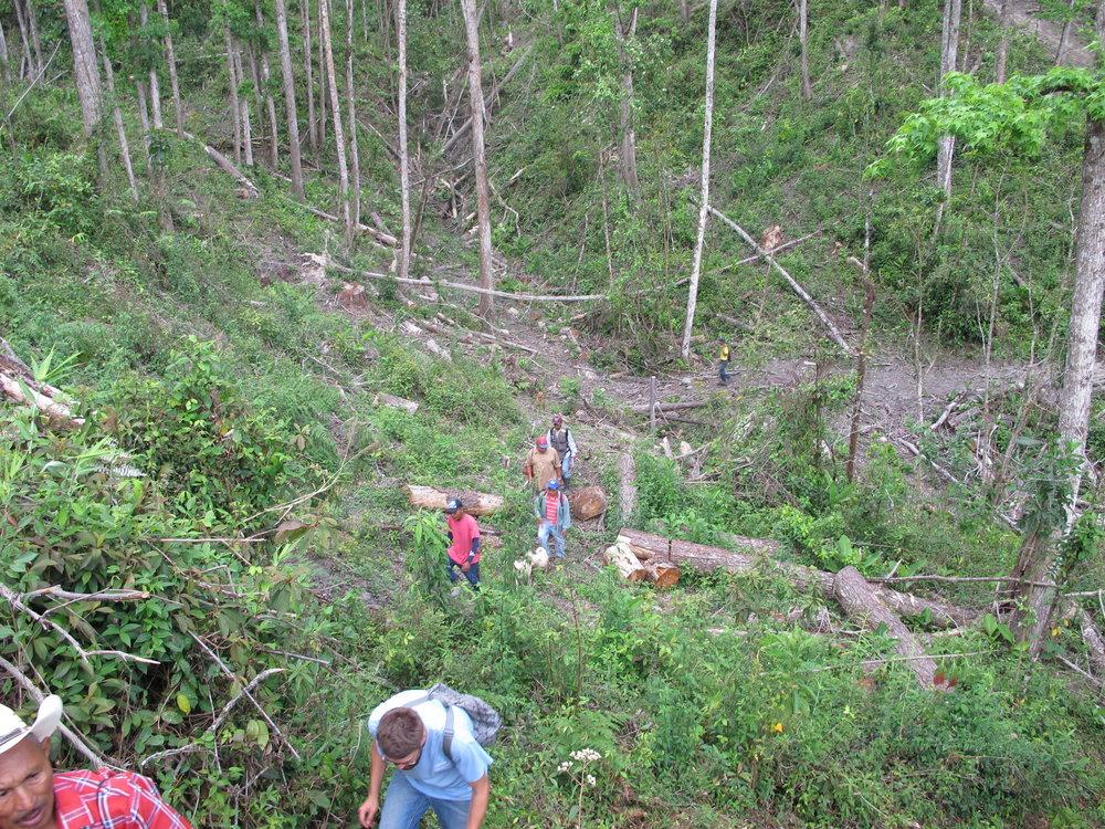 Una quebrada seca debido a deforestación abajo de la cuenca de Las Glorias