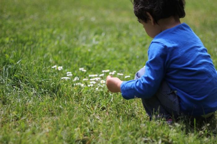 nikhil grass.jpg
