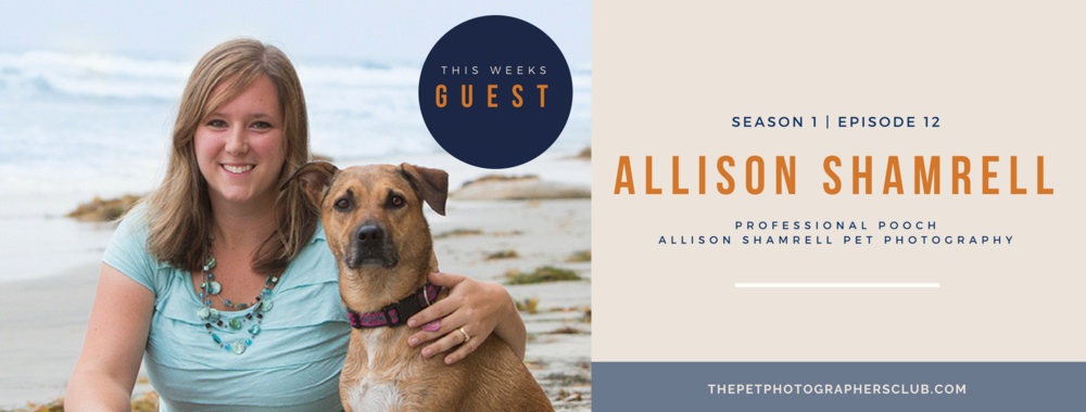Spoil your pet photography clients like Allison Shamrell to book more and have higher sales.png
