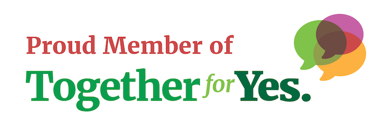 Disabled Women Ireland is a member of Together4Yes.png