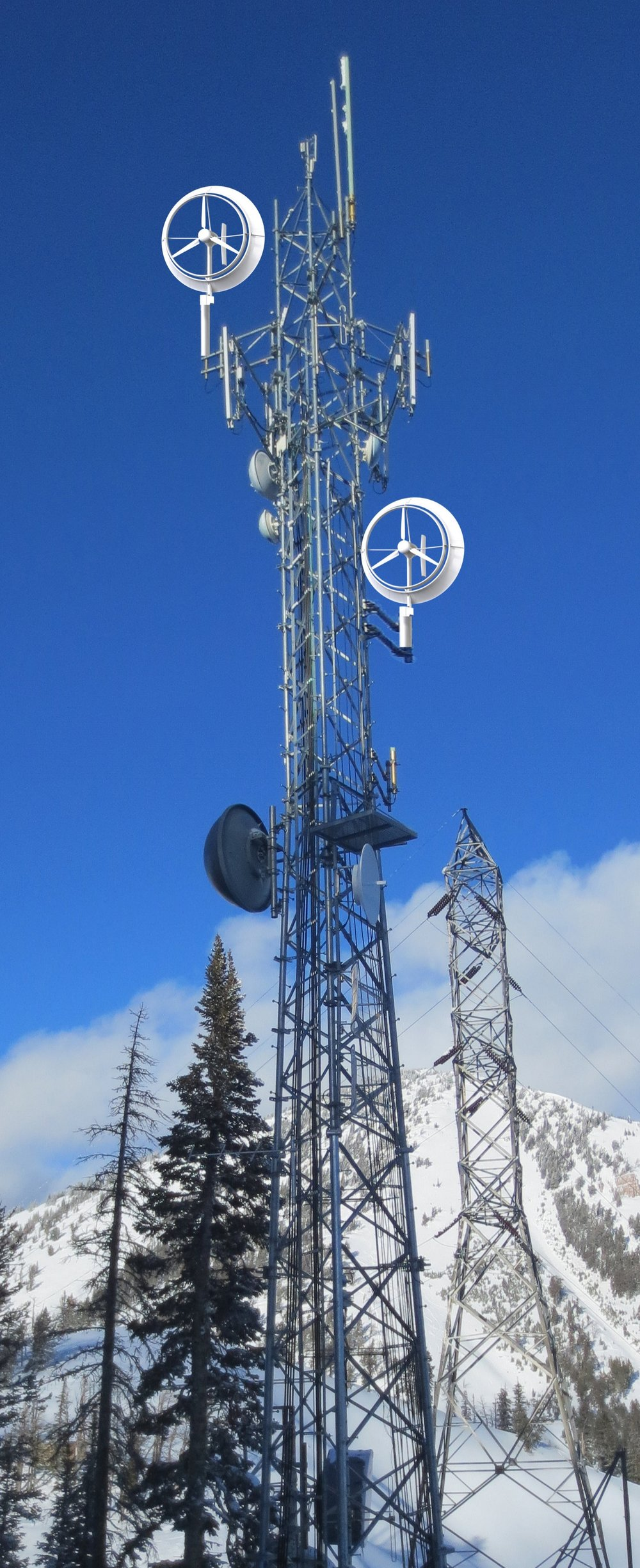 Cell Tower.jpg