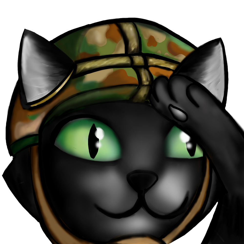Tier 1 - Army Cat Final.png