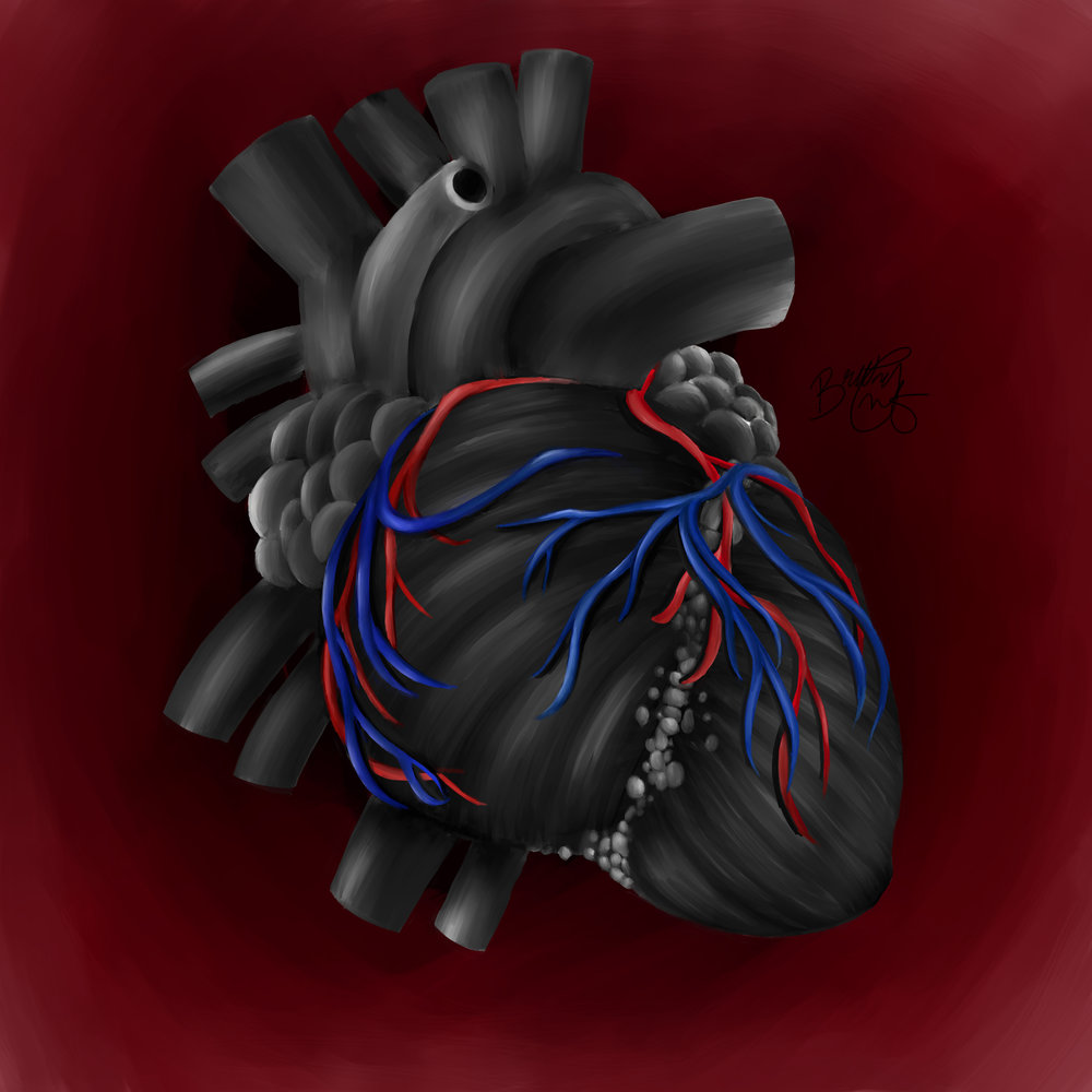 Still LifeHuman Heart Painting - Flattened.jpg