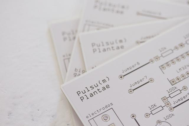 Image from Pulsu(m) Plantae