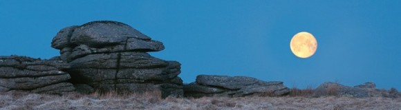 blue-moon-700x194-1-580x160.jpg