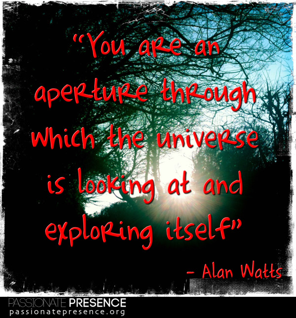 PPCCE-Quote-AlanWatts-You-are-an-aperture-through-V2-e1367580545369.jpg