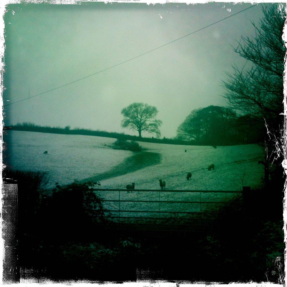 Devon under a soft blanket of snow, 2013