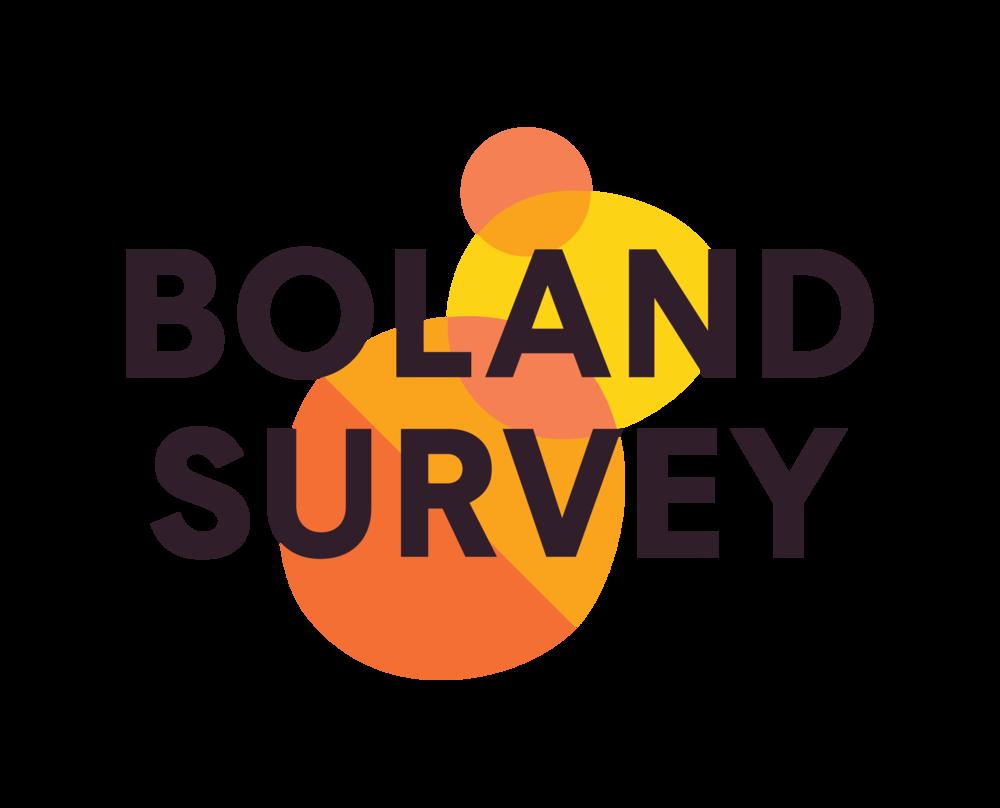 CCVO_Boland_Survey_Combination_Mark.png