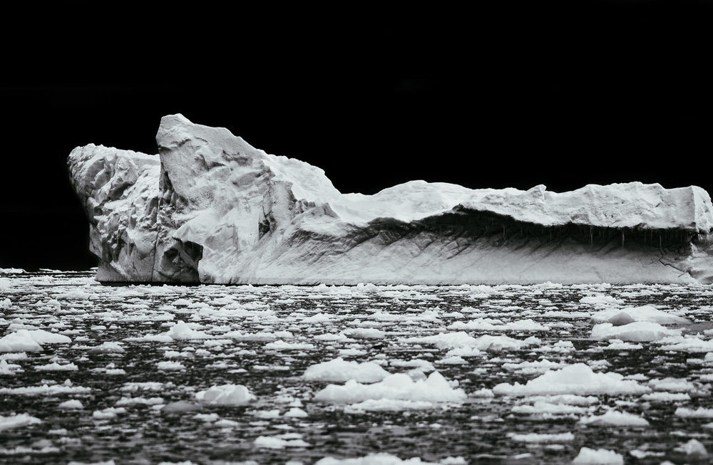 Iceberg, Curtiss Bay