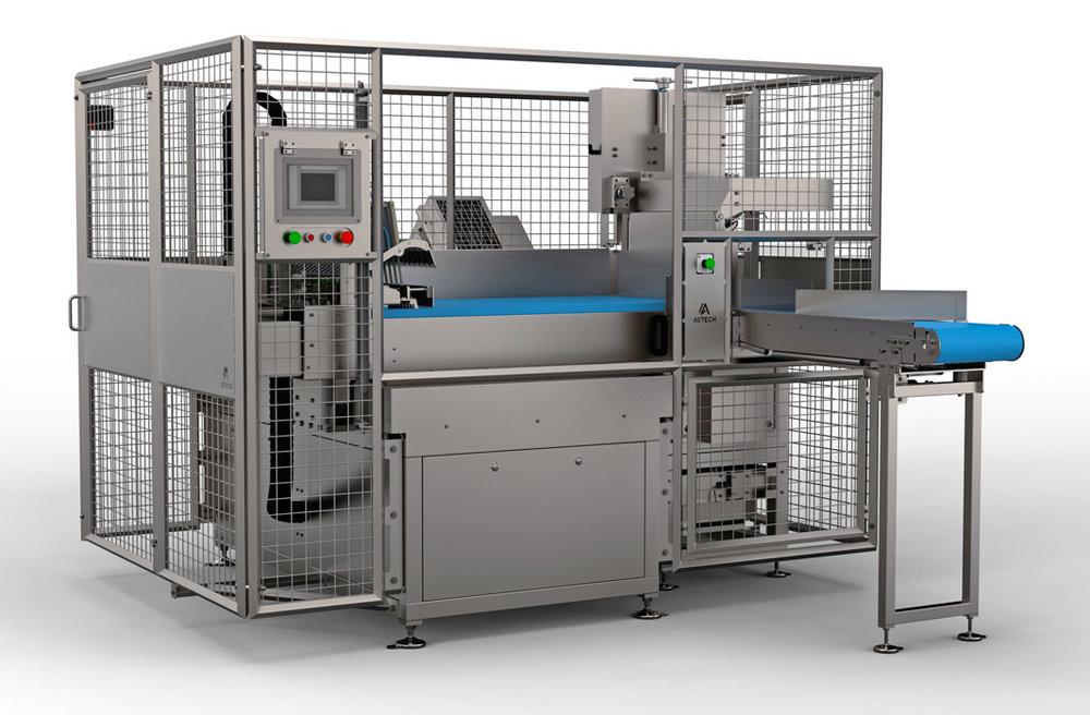 frozen-food-sawing-astech-spm-1.jpg