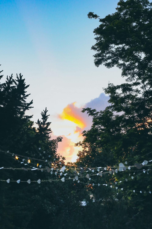 86_Wedding Sunset.jpg