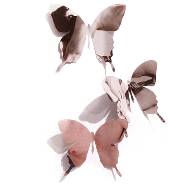 nicholas-konert-art-butterflies-mariposas-2011.jpg