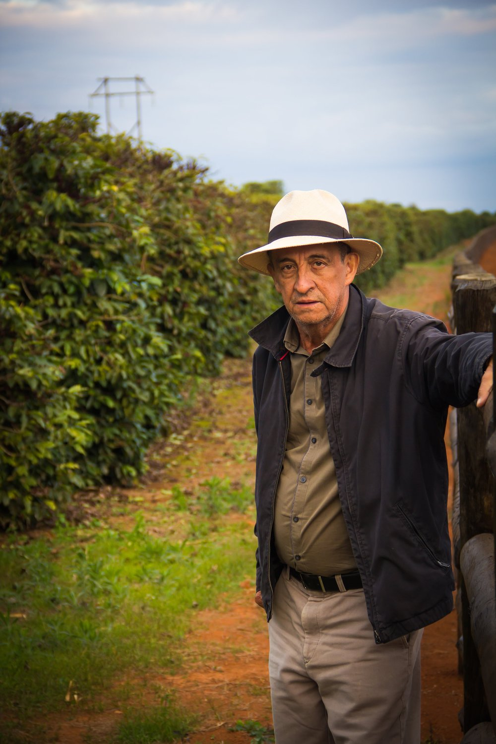 José Maria de Oliveira -  José Maria comes from a deep rooted history of coffee tradition. As a boy, his grandfather had a small coffee farm where his father and uncles use to work. José has many great memories of picking cherries beside his family and playing around the coffee trees with his grandfather. At the age of 7 José's family fell on hard times and they had no choice but to move to another part of the region and leave their home and farm behind in order to survive by working on different coffee farms.At age 17, José Maria, in the pursuit of a better life, he moved to the city of Belo Horizonte. His first job outside of coffee was as a ticket collector for the city bus line. His big break didn't come until later, when he began working inside of a pharmacy in hope of being able to earn a better living for his family. He eventually climbed the ranks and become a sales representative. In that position José learned 2 valuable lessons, the importance of being organized, and understanding at any level everything has a process. Eventually the realization set in with José, he could never stop thinking about Campos Altos. He always pondered to himself, how can the coffee in Campos Altos be so blessed? From that moment forward he made it his mission to one day have a piece of land in Campos Altos to live and grow coffee. He then moved home and fell in love with his wife Ebe, who's family history was identical to Josés. Ebe's family comes from a deep lineage of coffee pickers as well.
