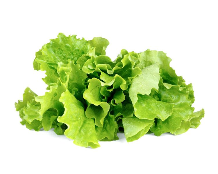 Lettuce_refill_1200x960.jpg