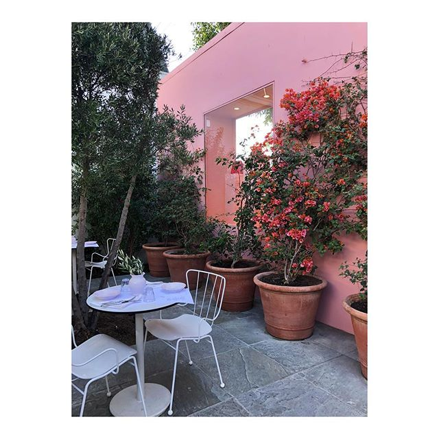 Sunday neighborhood explorations (WeHo). Walked over to the Melrose Farmer's Market and stumbled upon the Mansur Gavriel Café.