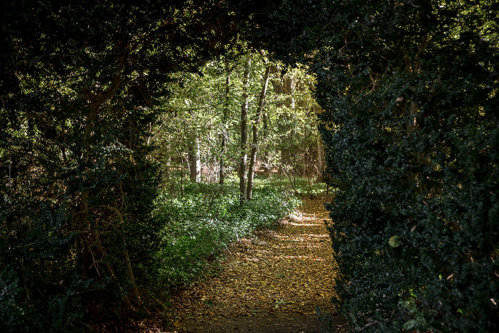Secret garden passageways change with all seasons