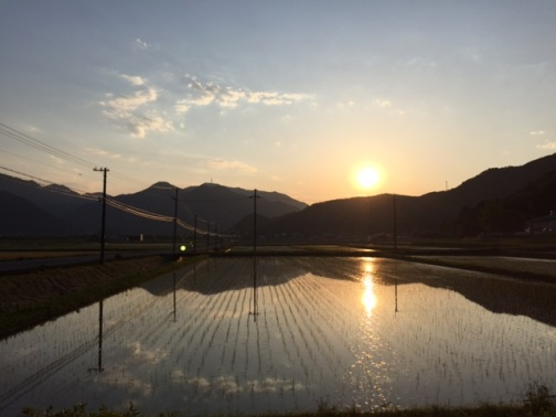 水面に射す夕陽