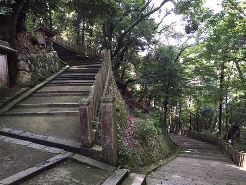 柏原八幡さん階段
