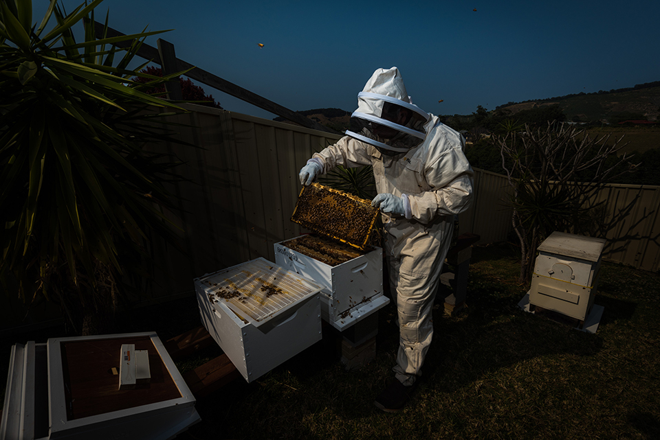 Michael - Bee Keeper (1 of 1).jpg