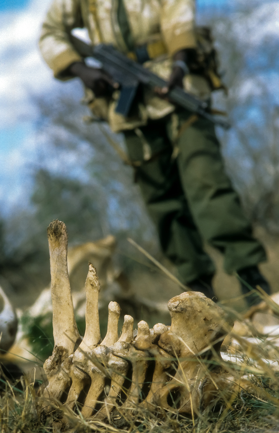 KWS Parks ranger examining the remains of a elephant poached for its tusks & left to die by Somali poachers, Tsavo East NP, Kenya, Africa. 1999 (Levels checked).jpg