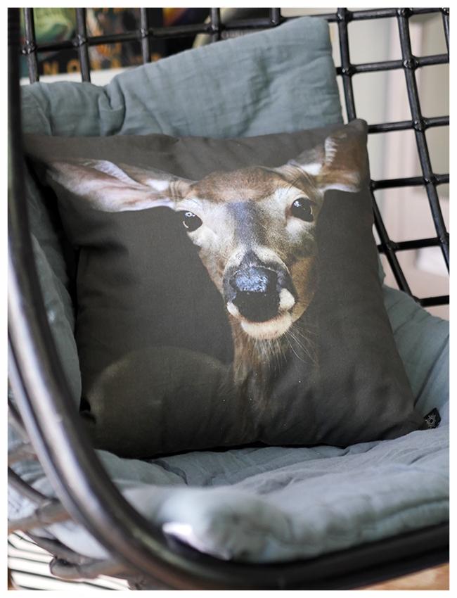 Cuckoo hanging chair with cushion.jpg