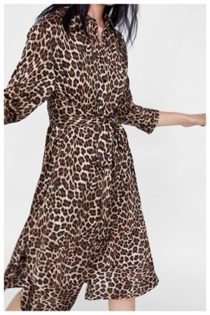 Zara Animal Print Dress 1.jpg