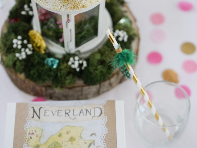 Neverland Party-18.jpg