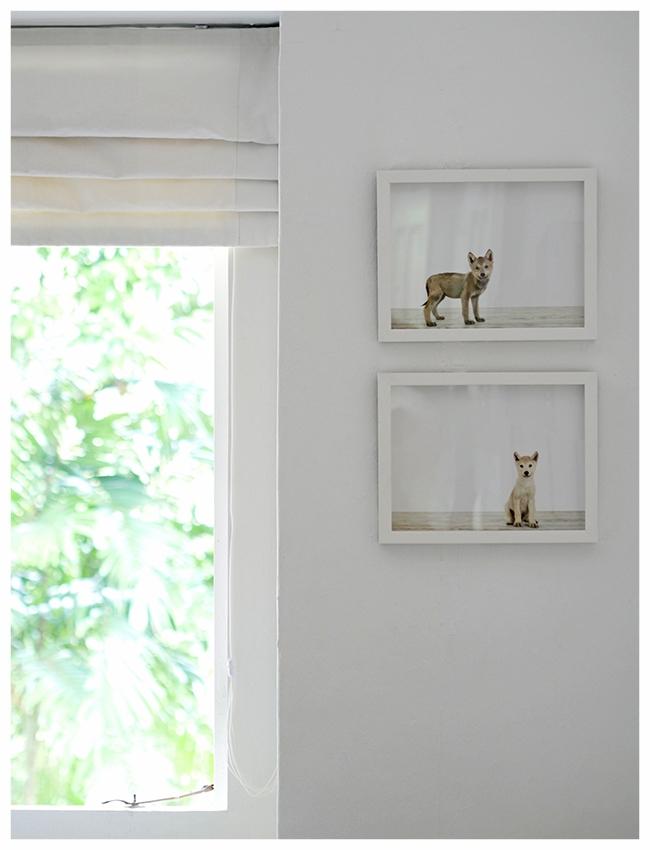 Cuckoo Little Lifestyle window with prints.jpg