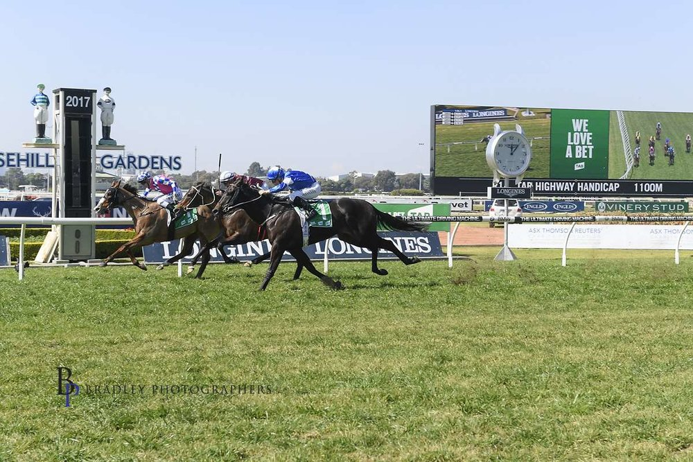 Image Courtesy of Bradley Photos - Mossman Gorge is one of Matt Dale's numerous TAB Highway Winners