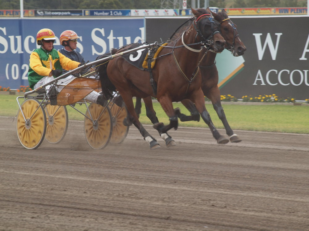 Image Courtesy of National Trotguide - Macca drives a trotter better than most. Here he is winning on Nandy Noot