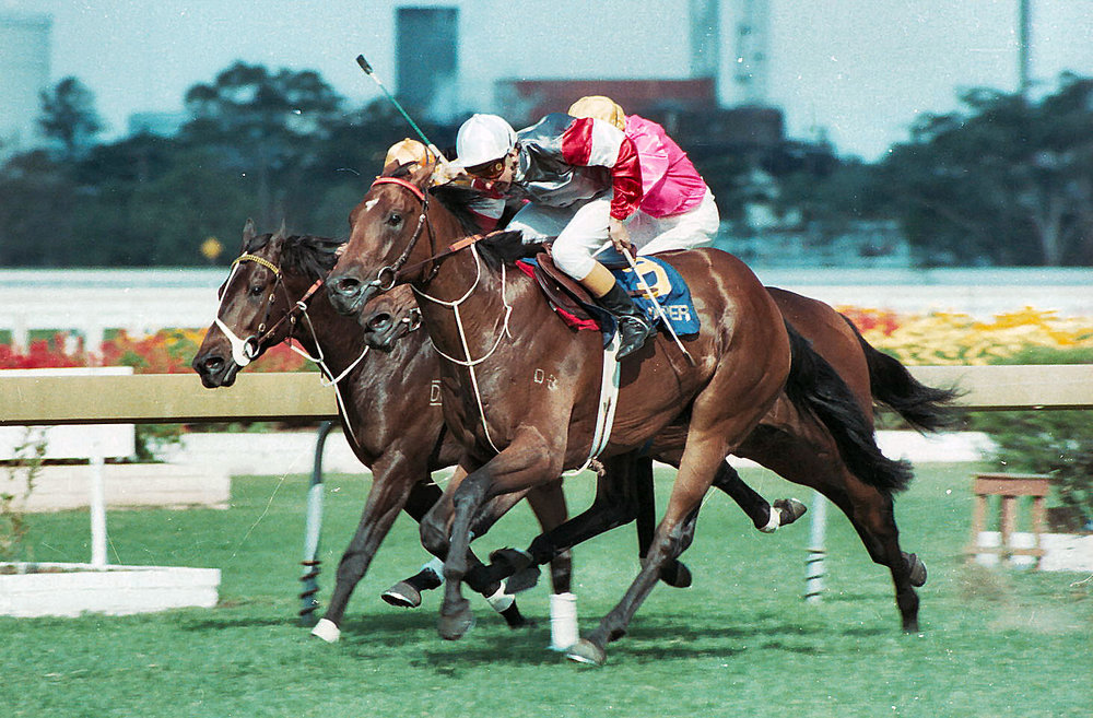 Image Courtesy of Steve Hart Photographics - Sir Dapper and Ron Quinton prevail in the 1983 Slipper