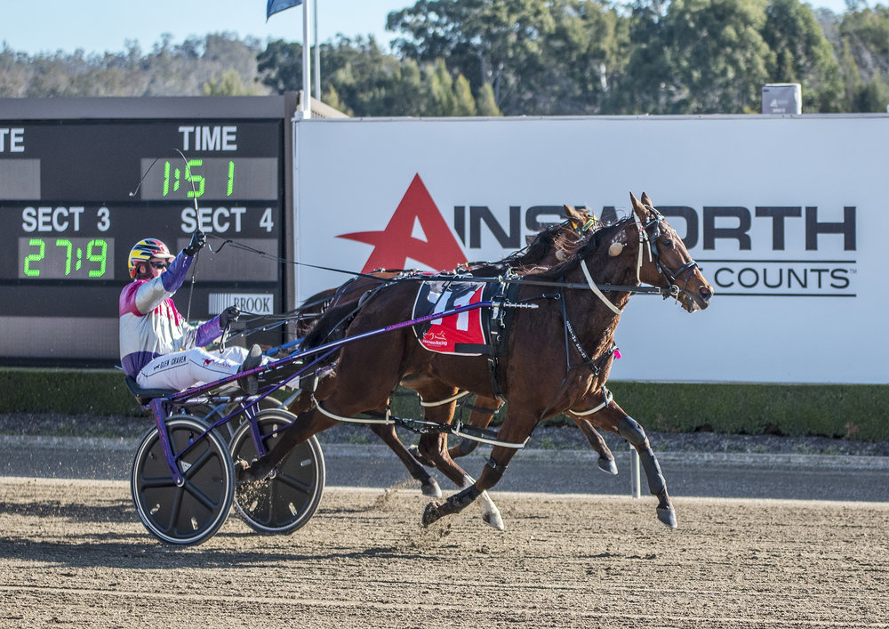 Image Courtesy of National Trotguide - Goodtime Heaven wins Breeders Challenge final
