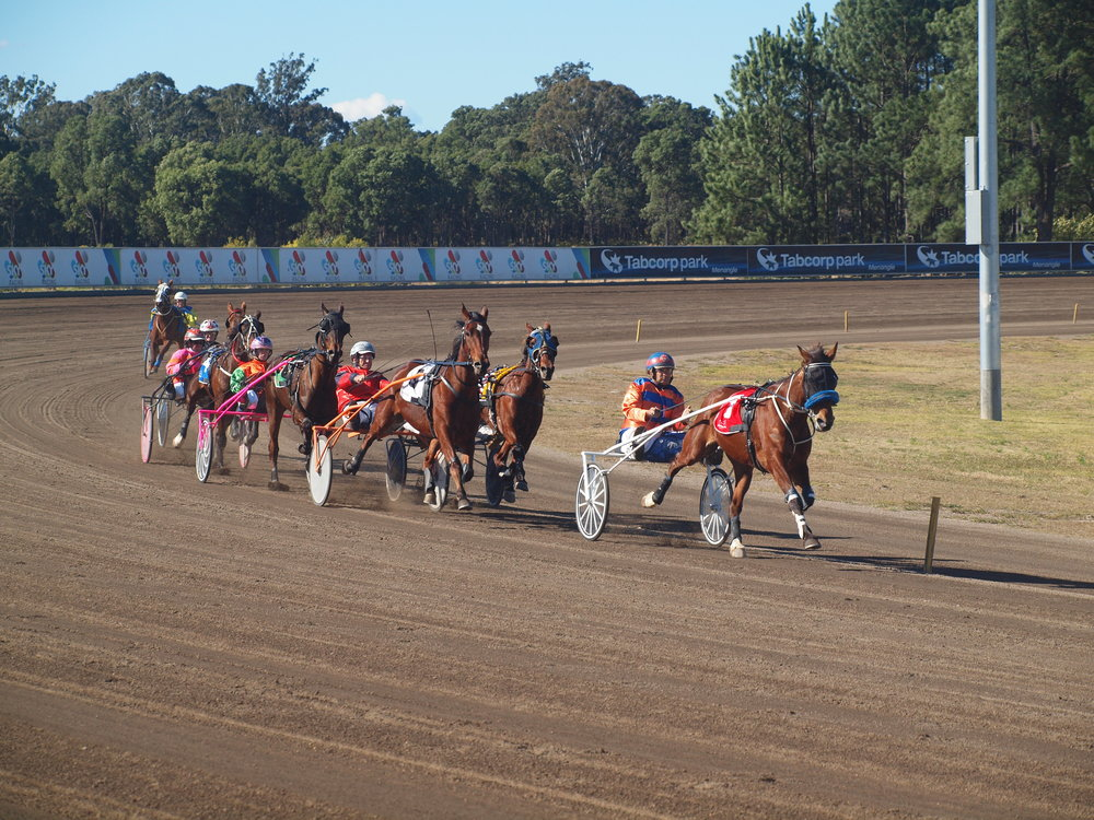 Image courtesy of Harness Racing NSW - Giving Its Best and Joe Rando on the way to another win
