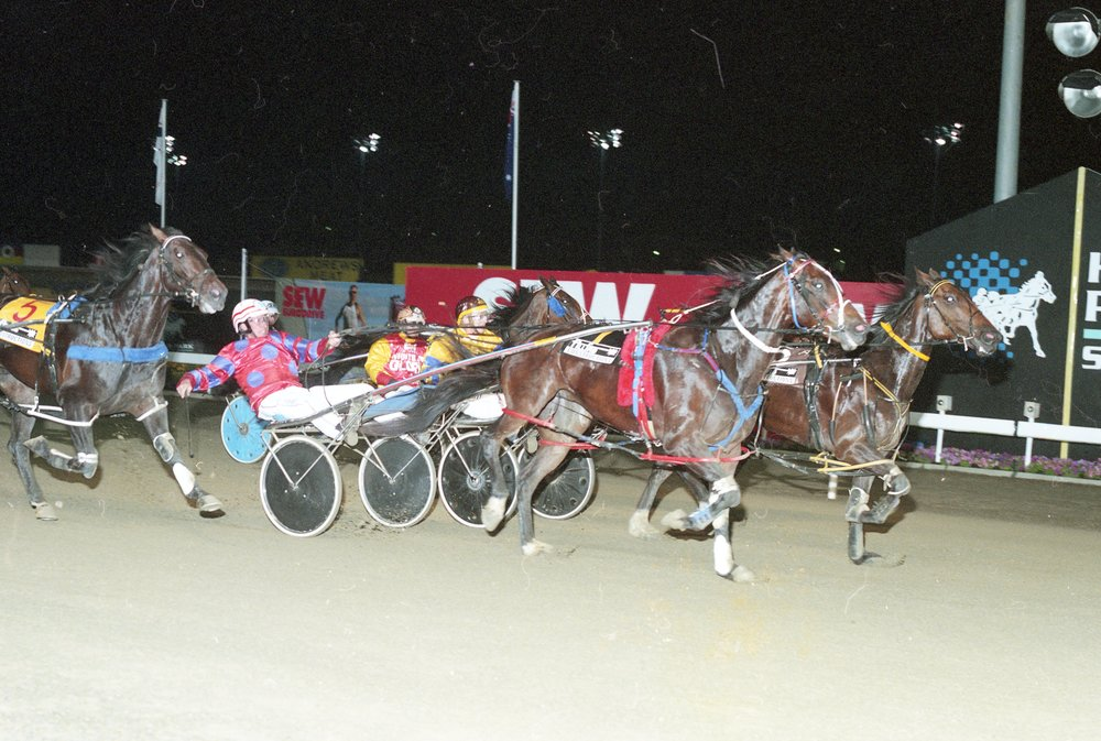 Image courtesy National Trotguide - Harry wins 2002 Miracle Mile with Double Identity.