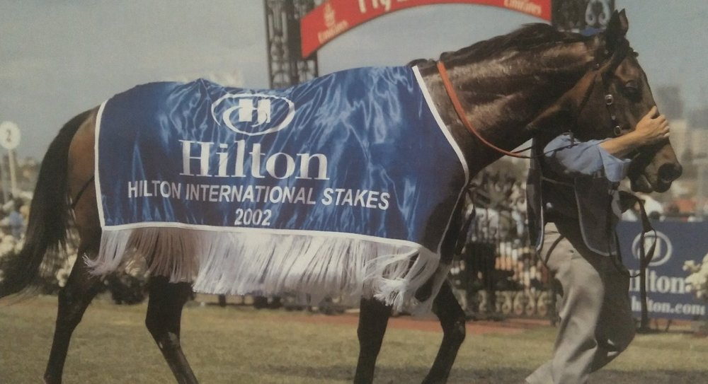 Into The Night after the 2002 Hilton International at Flemington