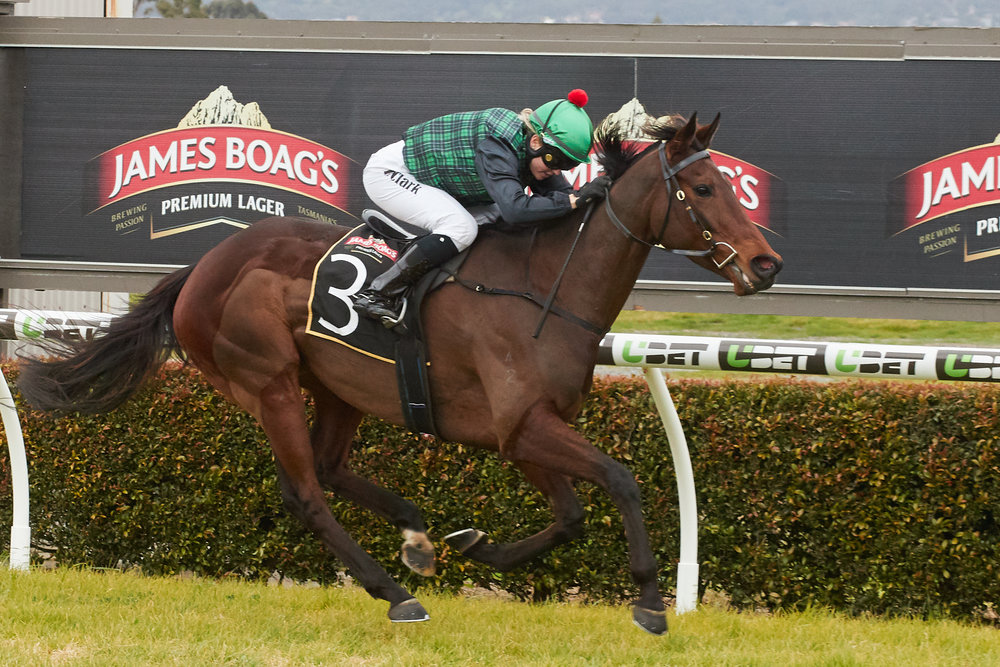 Image courtesy The Advertiser - Raquel wins on Alamonteel at Morphettville Parks