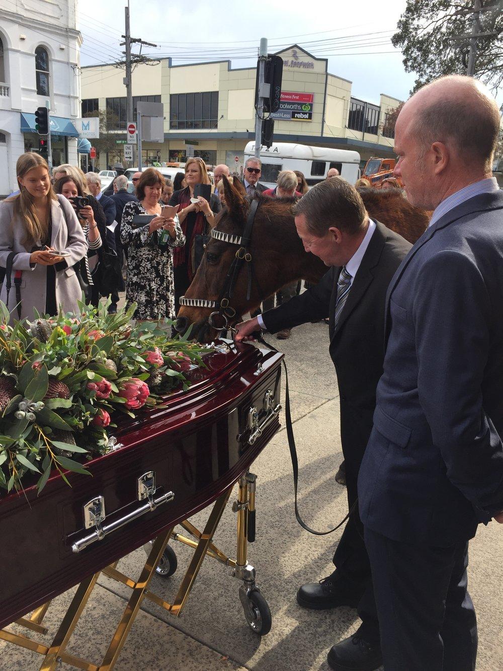 Stony nuzzles the casket.
