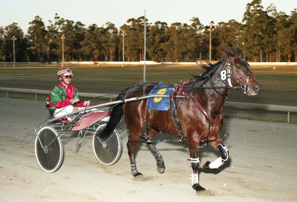 Image courtesy National Trotguide - David Wilkins driving Gavroche at Fairfield
