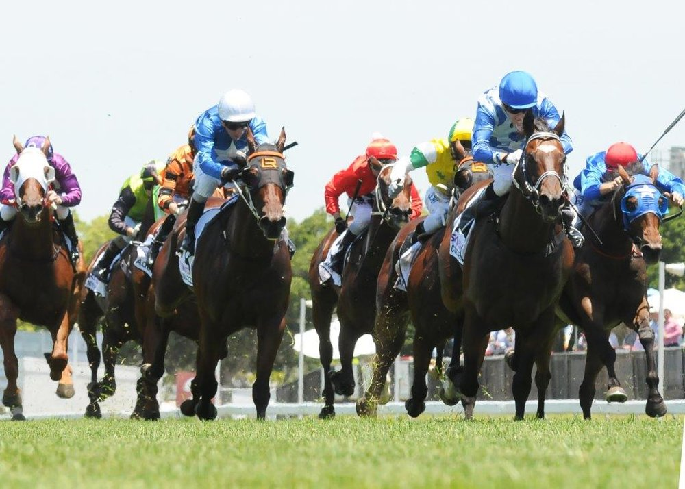 Image courtesy Trackside Photography - Michael wins Magic Millions Country Cup on Irish Constabulary.