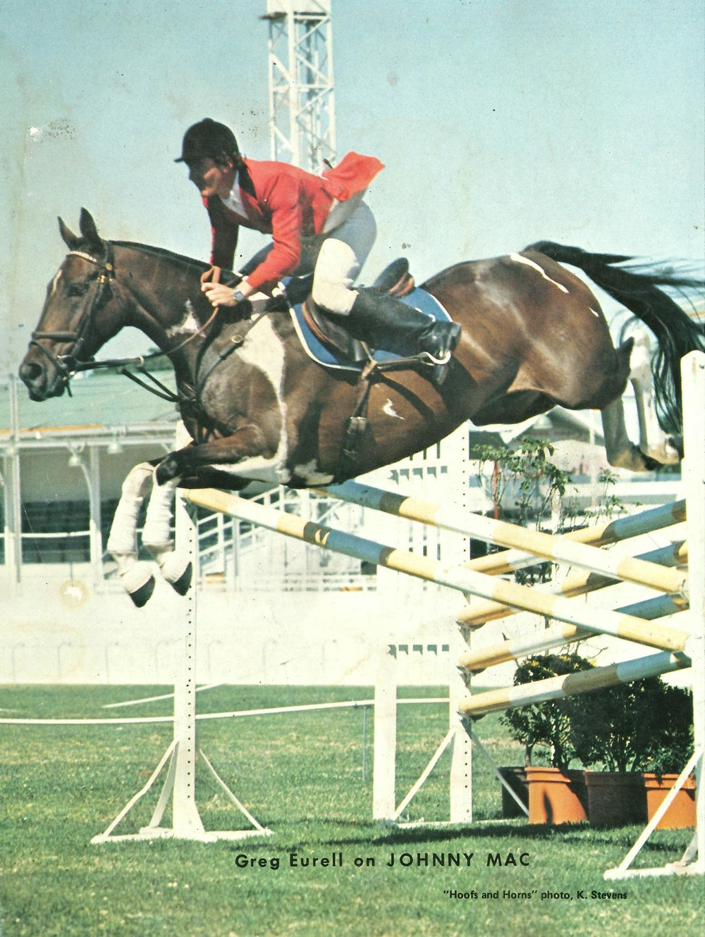 Greg on his all time favourite show jumper the amazing Johnny Mac.