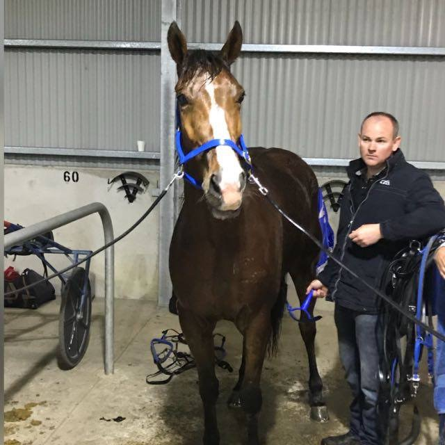 Joe with Im Intense in the stabling area at Penrith.