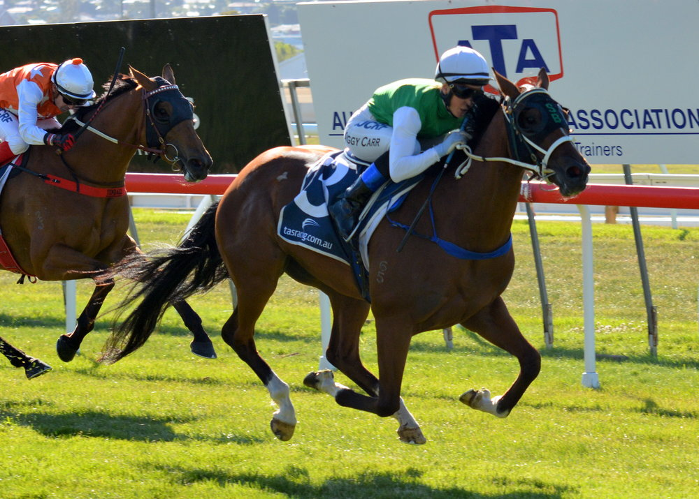 Image courtesy Tasracing - The little warrior coasts home in the Tasmanian Guineas at Elwick.